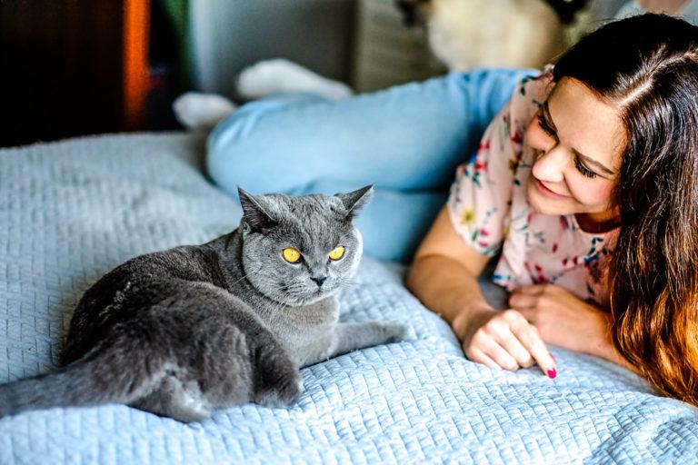 Tipps zur Haut- und Fellgesundheit der Katze