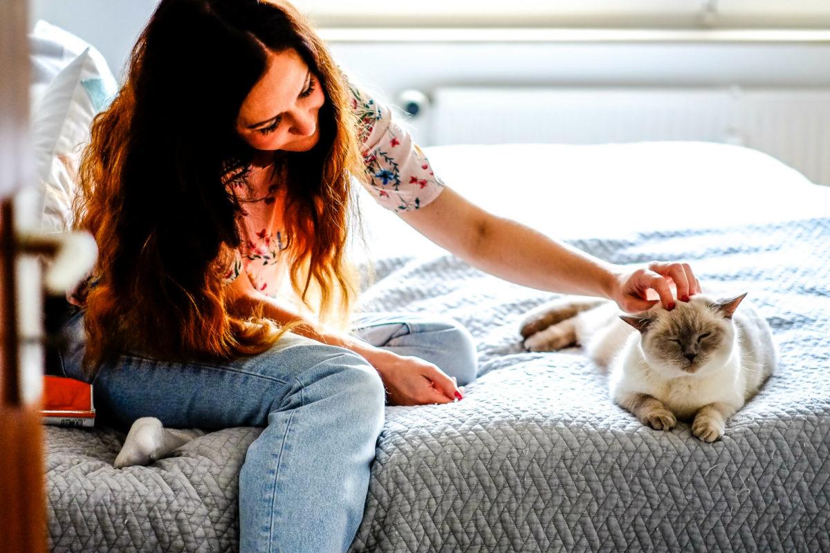 Haut- und Fellgesundheit von Katzen