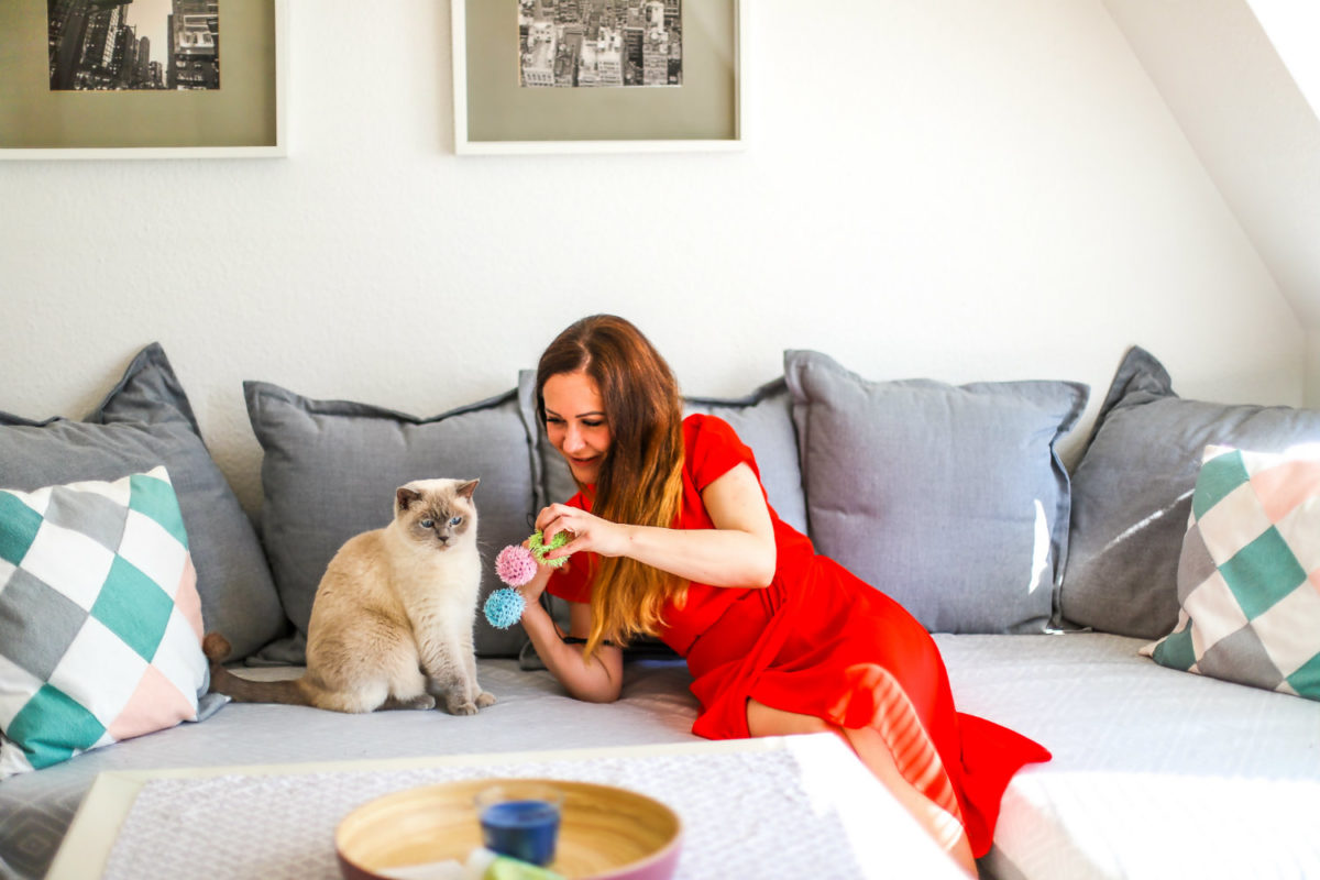 Katzen zeigen ihre Zuneigung anders