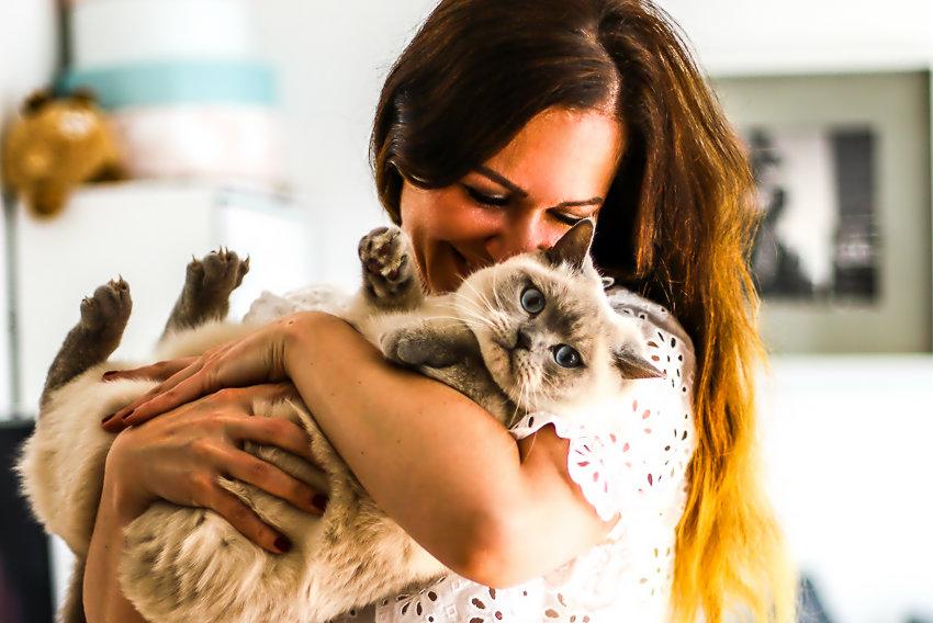 Freundschaft zwischen den Tieren und den Menschen