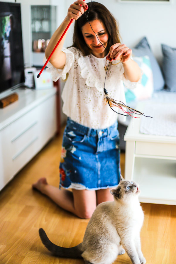 Freundschaft zwischen Mensch und Tieren