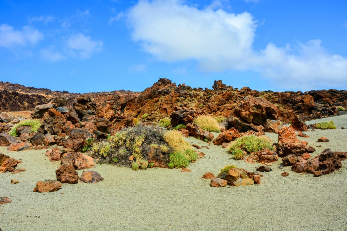 Steinlandschaft von Teneriffa